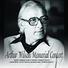 Arthur Wilson Memorial Concert - Diving Duck Records